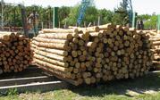 лес и лесоматериалы с Украины.