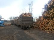 Предлагает к продаже лес - кругляк из России регионов Сибири/